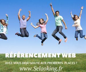 Agence de référencement SEO : Selooking